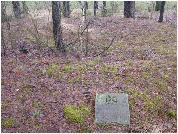 Pozostałość cmentarza w Tarnowie.